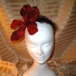 Red Plumed Amaryllis (venduto)